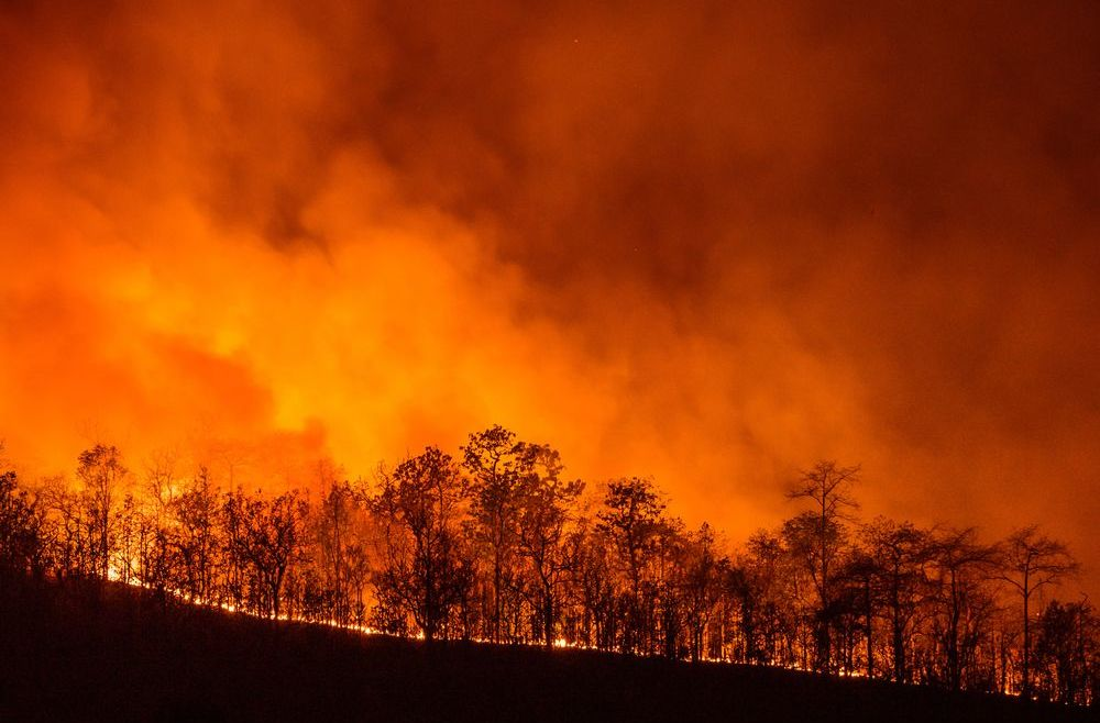 What the Construction Industry Can Learn from California Wildfires